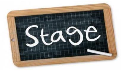 Daniël de Brouwerschool - Stage